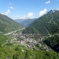 Raduno cani dei Pirenei a Bardonecchia