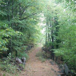 lezione-di-trekking-a-novalesa